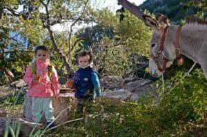 trekking-someggiato-escursioni-asinelli-05